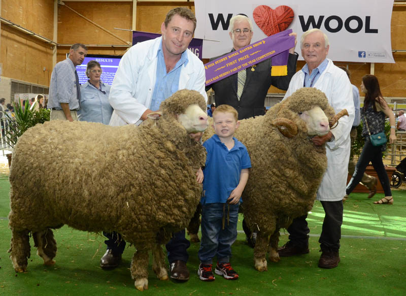 March shorn Merino Pair winner, the Grassy Creek stud, Reids Flat, began many broad ribbon wins for Michael Corkhill (holding ewe with son, Toby, 3 years) and father-in-law, Roger Webster, while RAS Sheep and Wool committee chairman, Tim Slack-Smith presents ribbon.