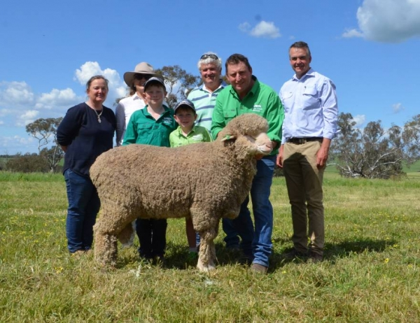 ane Corkhill, Jane Campbell and her brother-in-law Peter Campbell, Sunnyridge, Frogmore buyers of the top priced ram at $9000, paraded by Mick Corkhill, Grassy Creek, Reids Flat and Mark Hedley, AWN, Goulburn. Toby and Hugh Corkhill are assisting their father with presenting the ram.